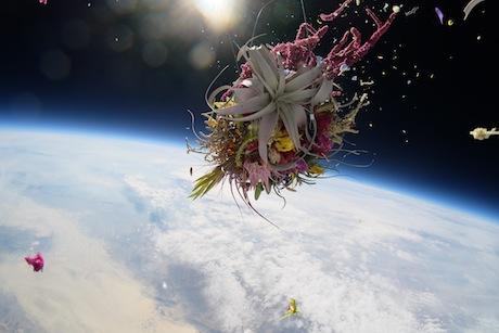 Azuma Makoto: Botanical Space Flight