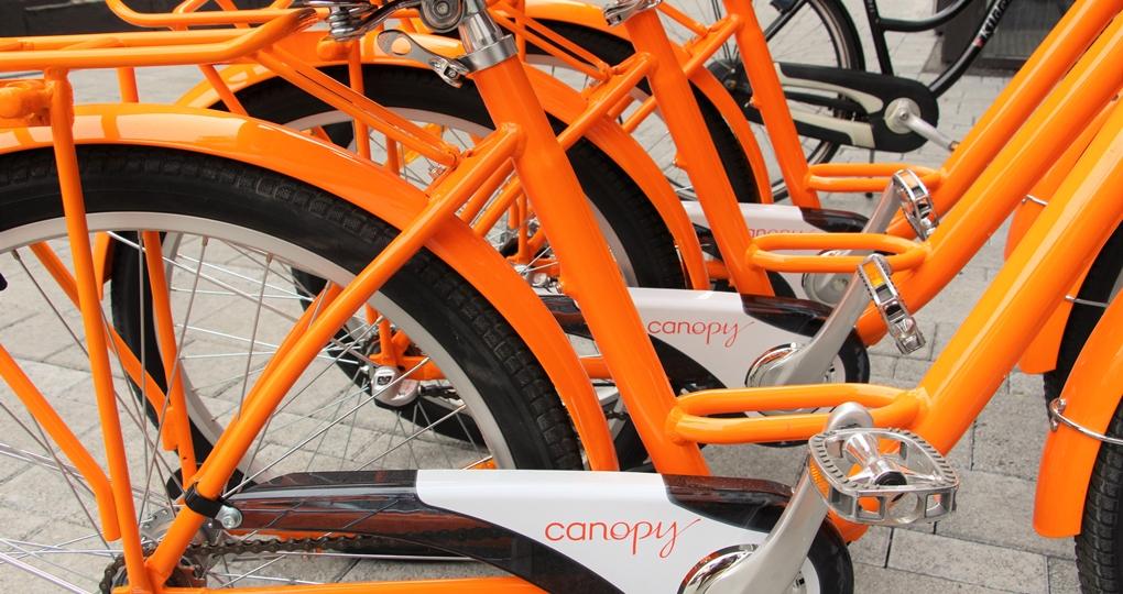 canopy by hilton bikes