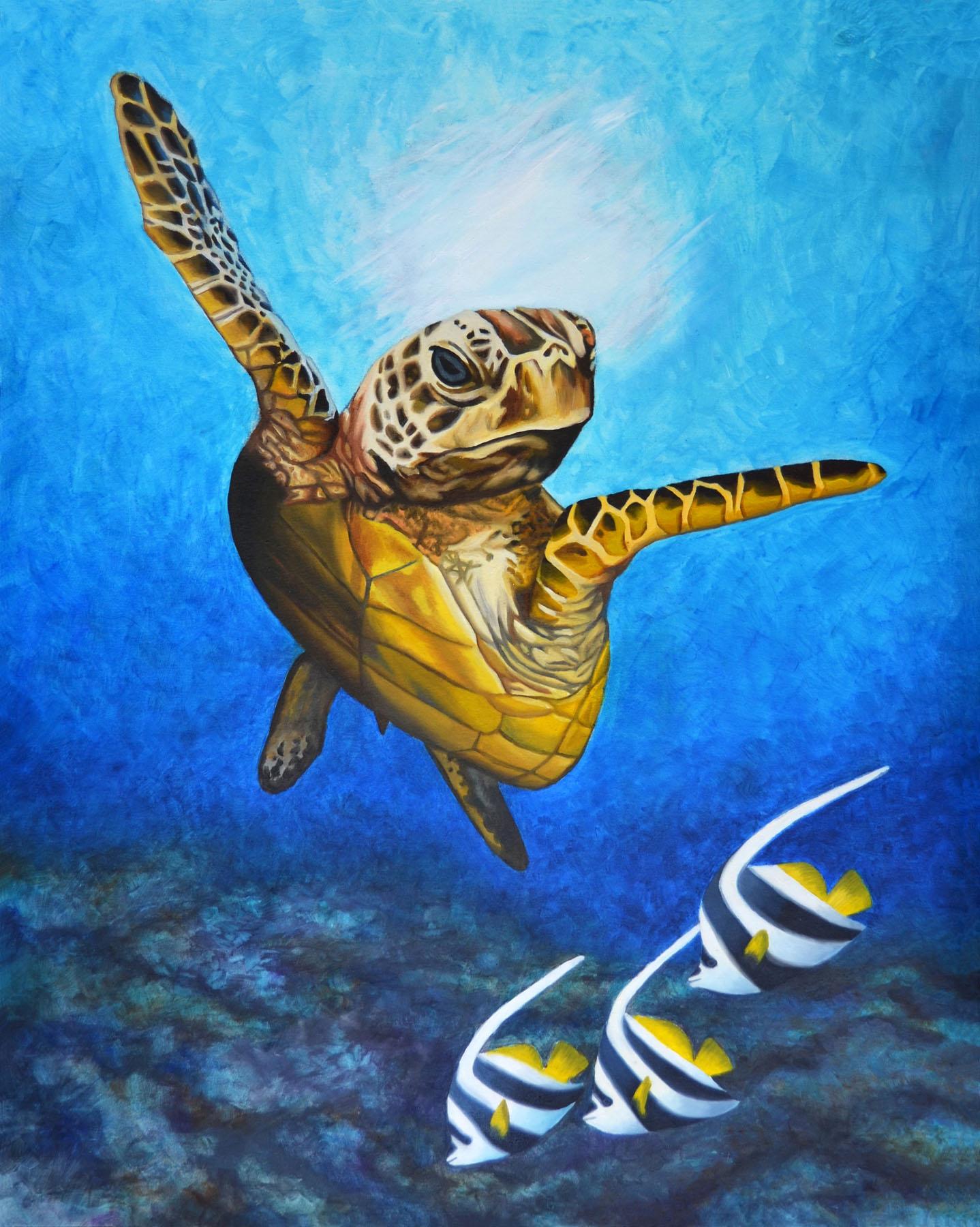 Turtle4Blog